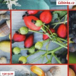 Plátno SOFT vyšší gramáž - Plody přírody, 15x15 cm