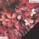 Kočárkovina, Purpurové listy, kombinace s koženkou SOFT 30 černou