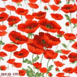 Látka, plátno - Vlčí máky červené na bílé, šíře 160 cm, 10 cm