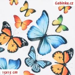 Kočárkovina Premium - Motýlci oranžoví a modří na bílé, šíře 155 cm, 10 cm, ATEST 1