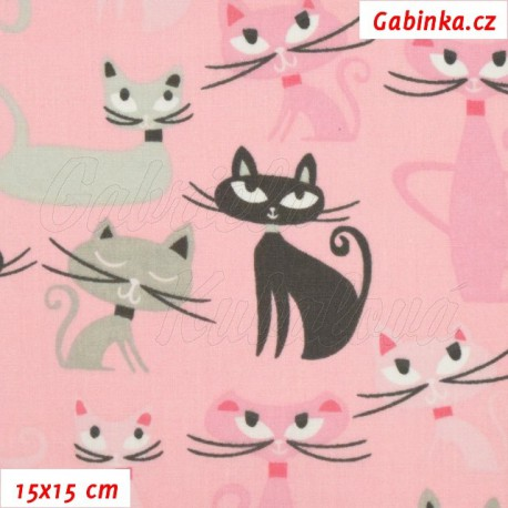 Plátno, Kočky s fousy černé a šedé na růžové, 15x15cm