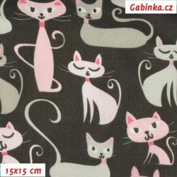 Plátno, Kočky s fousy růžové a šedé na černé, 15x15cm