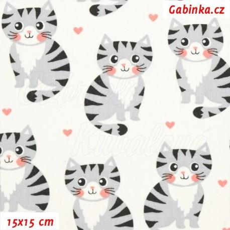 Plátno - Kočičky šedé na bílé, na bílé, 15x15 cm