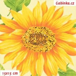 Plátno - Slunečnice na sv. žluté, šíře 160 cm, 10 cm