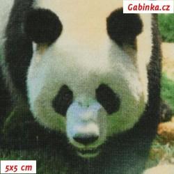 Látka úplet s EL Digitální tisk - Pandy na travičce, 5x5 cm