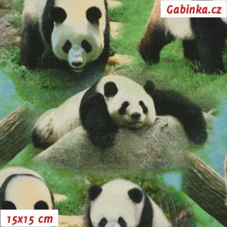 Látka úplet s EL Digitální tisk - Pandy na travičce, 15x15 cm