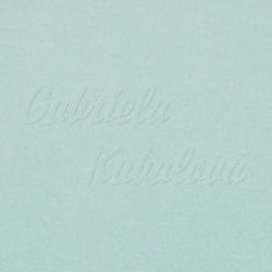 Zbytek - Látka micro fleece antipilling - FLEECE595, Mentolový, šíře 140-155 cm, 1,2 m