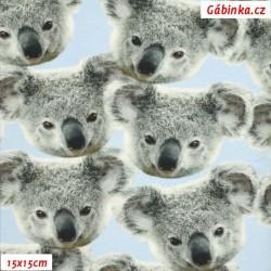 Úplet s EL Digitální tisk - Medvídek Koala, ATEST 2, šíře 160 cm, 10 cm