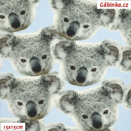 Látka úplet s EL Digitální tisk - Medvídek Koala, ATEST 2, šíře 160 cm, 10 cm