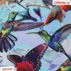Zimní softshell - Digitální tisk, Kolibříci na světle modré, 15x15 cm