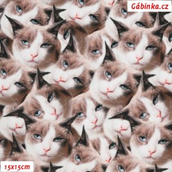 Hladký plyš MINKY Digitální tisk - Kočky, 15x15 cm