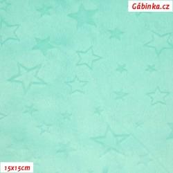 Hladký plyš MINKY - Hvězdičky MINT, šíře 160 cm, 10 cm