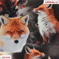 Úplet s EL Digitální tisk - Lišky v lese, ATEST 1, 15x15 cm
