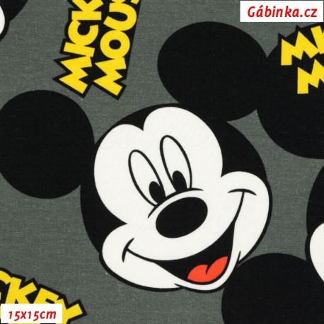 Teplákovina s EL Digitální tisk - Mickey-Mouse se jménem na šedé, 15x15 cm
