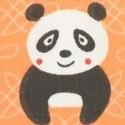 Medvídci, Pandy