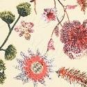 Květiny LUXURY